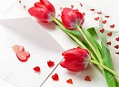 Arreglos Tulipanes